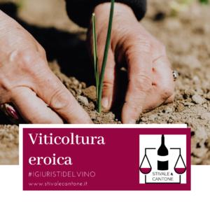 Viticoltura eroica diritto, legge e normativa
